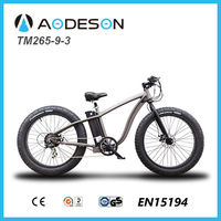 Hot sales unique design and powerful model fat tire electric bicycle, sport bike, beach cruiser TM265-9-3