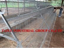 TAIYU Poultry Battery Cage System Ghana