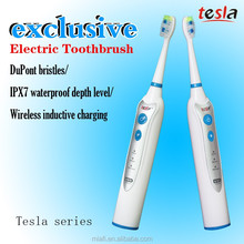 TESLA MAF8120 adult senior care electric toothbrush Factory, Wholesale toothbrush