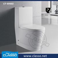 Safeguard toilet soap water saving toilet dual flush toilet for the elderly