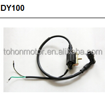 ignition_coil_DY100.JPG