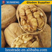 Walnut & Walnut Kernel for sale ( B)
