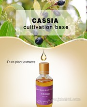 High Percentage of Cassia Leaves oil