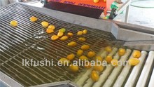 FACTORY OUTLET(FUSHI BRAND) FRUIT&VEGETABLE WASHING WAXING AND SORTING MACHINE