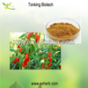 Protect eyesight Goji Extract / Goji berry extract /Goji extract powder