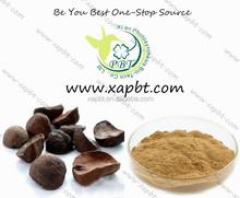 natural and nutritional kola nut powder 5:1kola nut extract