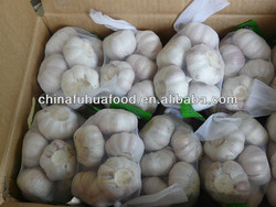 2015 New Crop Fresh Garlic All Kinds of Size and Package