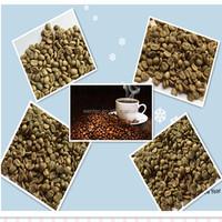 Bulk Packaging Arabica Green Coffee Bean,Raw Arabica coffee bean