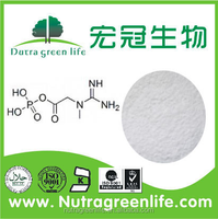 Top Quality Creatinol Phosphate