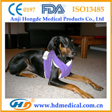 HD-30774 How to Bandage a Knee for Support and Bandage Dressings and Bandages for Dogs