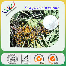 GMP factory supply Chinese herb extract best price saw palmetto extract palm fatty acid distillate