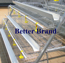 New design Better Factory hot-sale 120 birds A type cheap chicken cages