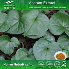 100% Natural Asarum Extract / Herb of Manchurian Wildginger