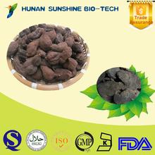 Dried high quality Prepared Polygonum multiflorum small lumps