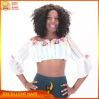 afro kinky human hair Wigs hot sale beautiful Curly afro wigs for black women