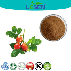 Only for Natrual ISO Factory Supply Wild Rosa Fruit Extract