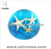 Dome Starfish Embedded in Resin Paperweight