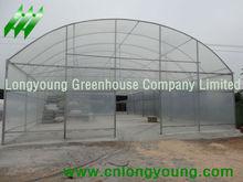 Invernadero Agricultura
