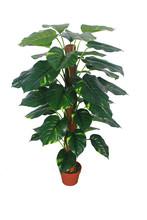 Manufacturer high imitation evergreen artificial scindapsus aureus decoration of houses interior