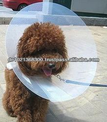 Pet Protection Cover,Eco-friendly PP,colorful,low price with high quality