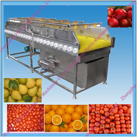 Prickly pear washing machine/ Fruit Brush cleaning machine