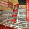 2014 hot sale automatic chicken layer cage for sale in philippines poultry cage