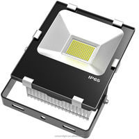 water proof 65 floodlight led, beam angle 120 degree, meawell driver, CRI>80, power factor 0.95, 50w Shenzhen flood light led