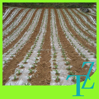 vegetable plants protection agricultural mulch film