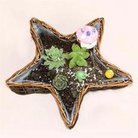 Star shape willow basket planter pot for Christmas decoration