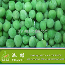 IQF Frozen Green Peas From New Crop of China Origin