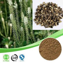 black cohosh extract 3.5% triterpenoid saponin black cohosh extract powder Triterpene Glycoside 3.5% triterpenoid saponin powder