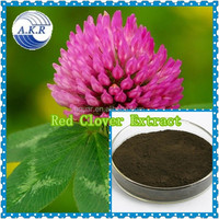 GMO manufacturer supply free sample 100% pure natural red clover extract powder Isoflavones 40%