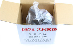 Dongfeng Auto Parts Diesel 6CT Water Pump C3966841