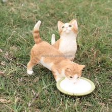 Hot Selling licking Milk Kitten