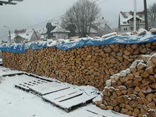 Firewood ash, birch, oak, beech- high quality