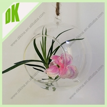 """Hanging glass indoor plant terrarium and Globe terrariums are a great affordable and """"green friendly"""" gift choice as well."""