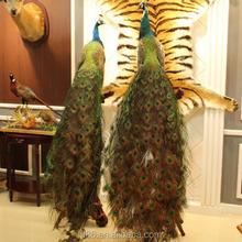 feather mini craft decoration artificial bird peacock