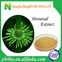 Health food CAS NO.: 1343-98-2 Horsetail extract plant extract