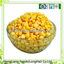 Chinese export fresh canned corn ingredients