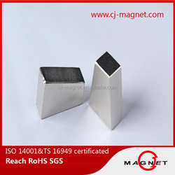 Rotor magnet for pump application