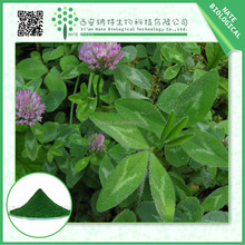2015 hot selling 12% Isoflavones Red Clover Extract with low price