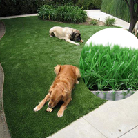 Anti-Aging Plastic Grass Mat For Raising Pets