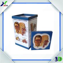 Promotional plastic pen holder with 3D medical chart / 3D medical penholder