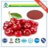 GMP Factory Supply Organic Acerola Cherry Extract