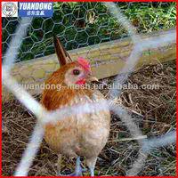 hexagonal decorative chicken wire mesh/hexagonal wire netting