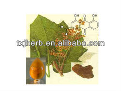Rhein 98%hplc from Natural Herbal Extract