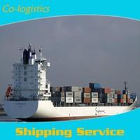 FBA sea shipping cargo from China to India --Joyce ( skype: colsales30 )
