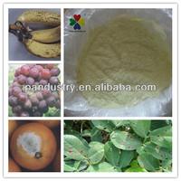 Systemic Fungicide / Preservatives Imazalil 97%TC