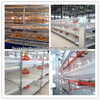 Automatic multi-tier poultry battery cages/Export standard poultry battery cages for broiler chickens