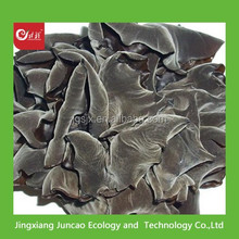 Names of Mushrom Dried Black Fungus, Dried wood ear Mushroom for sale